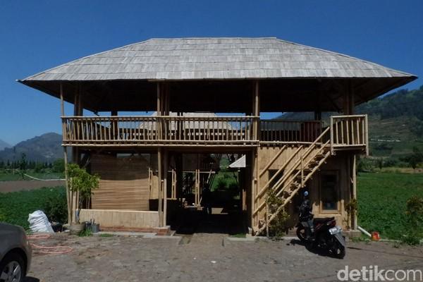 Bangunan homestay ini pun tidak biasa, terbuat dari bambu apus dan petung. Sekelilingnya adalah tanaman kentang (Uje Hartono/detikcom)