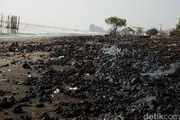 Pesisir Pantai Karawang Menghitam Tercemar Tumpahan Minyak Mentah