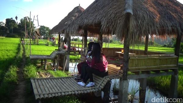 Mamasa Orchid menawarkan keindahan panorama alam khas pedesaan dan warna-warni anggrek di tengah persawahan (Abdy/detikcom)