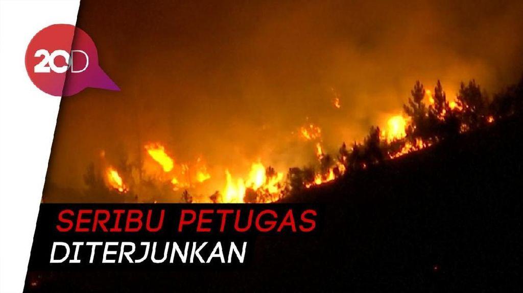 Ngerinya Kebakaran Hutan di Portugal
