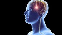 Rajin Makan Yogurt hingga Tempe Bisa Cegah Parkinson