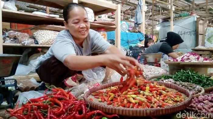 Foto: Harga Cabai di Purworejo Melejit (Rinto Heksantoro/detikFinance)