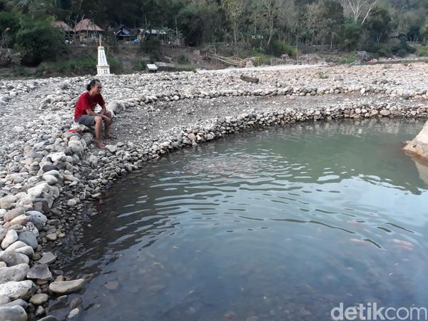 Salah seorang pengelola, Riza Marzuki mengatakan, padang batu ini selalu muncul saat musim kemarau. Untuk tahun ini padang batu tersebut muncul di Dusun Jetis, Desa Selopamioro, Kecamatan Imogiri, Bantul. (Pradito Rida Pertana/detikcom)