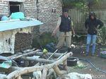Domba Warga di Probolinggo Ditemukan Mati Misterius