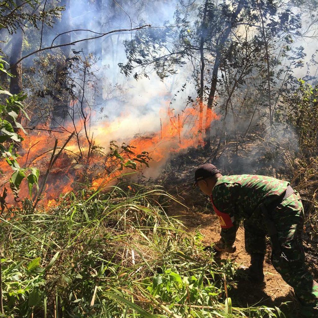 Ini Langkah Pemprov Jatim Atasi Kebakaran Gunung Panderman