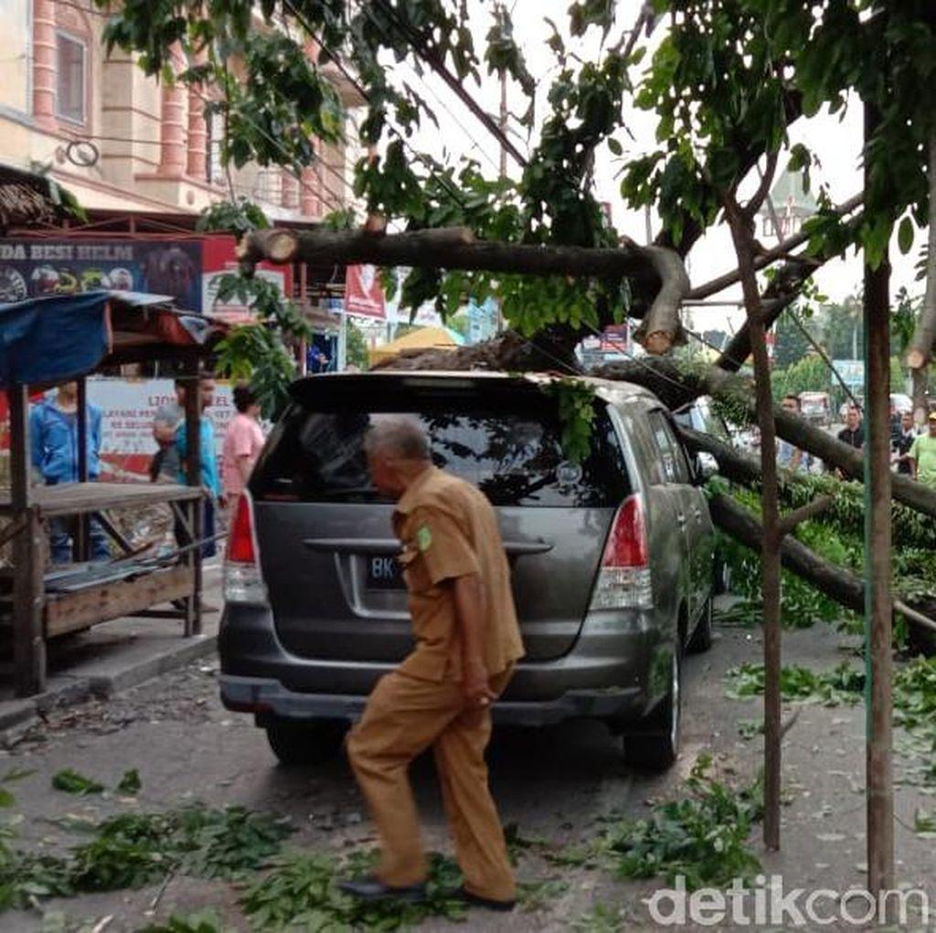Angin Kencang di Medan Sebabkan Pohon Tumbang, Timpa 3 Mobil