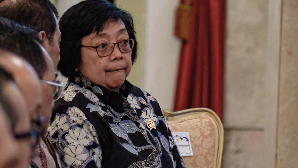 Lahan Ibu Kota Baru Rawan Kebakaran, Ini Kata Menteri LHK