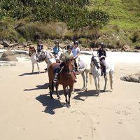 6 Tempat Wisata di Selandia Baru untuk Keluarga