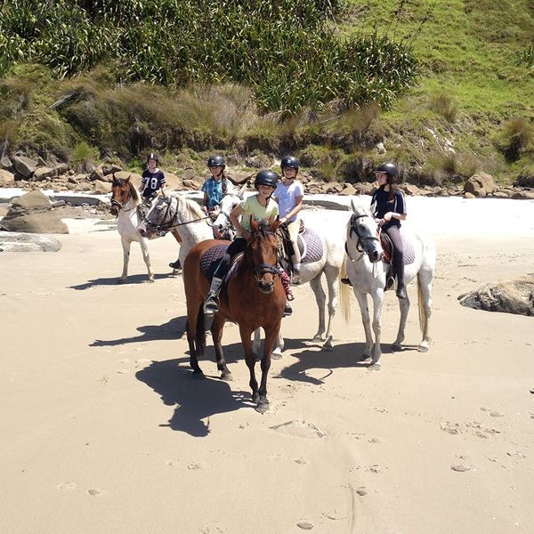 Berkuda di pantai? Coba saja ajak anak ke Pakiri Beach. Di sana, juga ada resor pinggir pantai yang cocok untuk liburan keluarga (Tourism New Zealand)