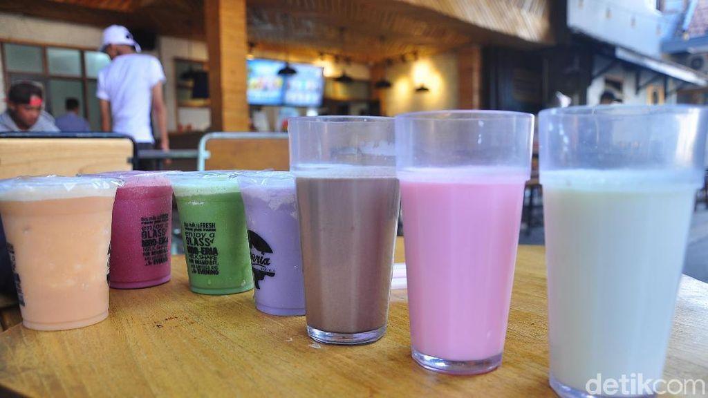 Di Susu Moeria yang  Berusia 81 Tahun Ini Masih Bisa Minum Susu Sapi Murni