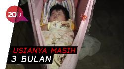 Bayi di Poliwali Mandar Beratnya 7,4 Kg karena Susu Formula