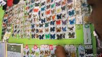 Melongok Pembuatan Kerajinan Kupu-kupu di Maros