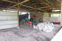 Mantan Petani Sawit di Riau Sukses Ternak Ikan dan Jual Kompos