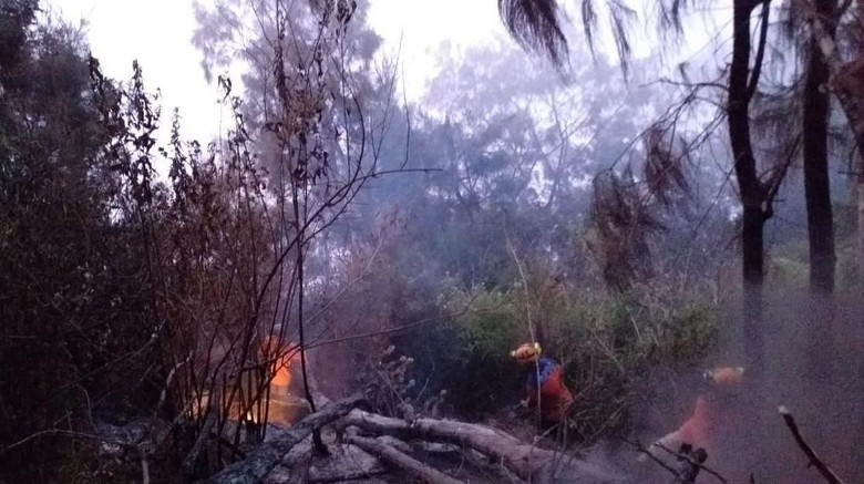 Bara dan Titik Api Masih Muncul di Gunung Panderman