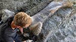 Tulang Dinosaurus Raksasa Ditemukan di Prancis
