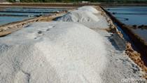 KPPU Bacakan Putusan Sidang Kasus Kartel Garam Sore Ini