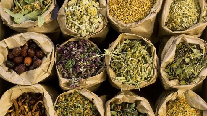 ilustrasi herbal