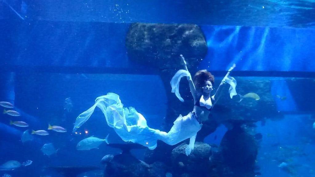 Bidik Foto Mermaid di Jakarta Aquarium Bisa Dapat Rp 5 Juta