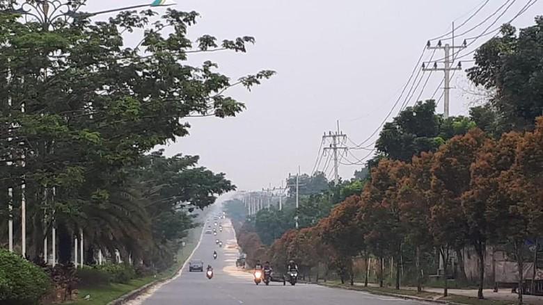 Ilustrasi jalanan Pekanbaru (Chaidir Anwar Tanjung/detikcom)