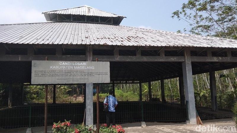 Inilah Candi Losari di Dusun Losari, Desa Salam, Kecamatan Salam, Kabupaten Magelang. Candi ini kalah pamor dengan Candi Borobudur (Eko Susanto/detikcom)