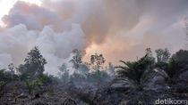 Karhutla di Riau Terus Meluas, BPBD Ungkap Kendala Pemadaman Api