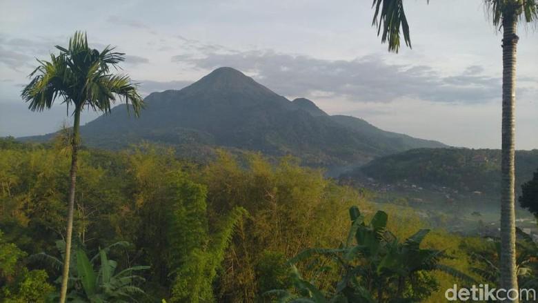 Gunung Penanggungan 2019 (Enggran Eko Budianto/detikcom)