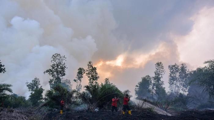Sejumlah petugas pemadan kebakaran PT Riau Andalan Pulp and Paper (RAPP) berusaha memadamkan kebakaran lahan gambut di Desa Penarikan Kecamatan Langgam Kabupaten Pelalawan, Riau, Minggu (28/7/2019). Berdasarkan data Badan Nasional Penanggulangan Bencana (BNPB) kebakaran hutan dan lahan hingga Juli 2019 luasnya lebih dari 27 ribu hektare, dan kini masih terus meluas di Kabupaten Pelalawan dan Siak. ANTARA FOTO/FB Anggoro/foc.