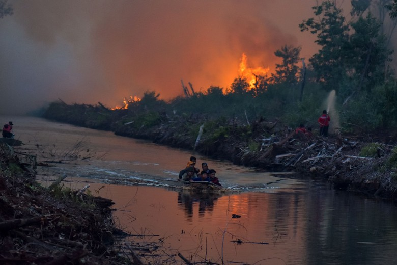 BNPB soal Kebakaran Hutan Sulit Padam: Gambut Kita Sangat Dalam