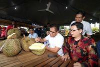 Ini Durian Jumbo 'Lima Jari' Asal Malaysia yang Bernama 'The Rock'