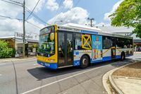 Transportasi umum di Brisbane yang memakai bahan bakar ramah lingkungan (iStock)