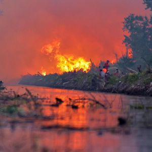 Siapa Perusahaan Singapura Penyebab Kebakaran Hutan?