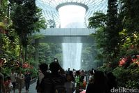 Menakjubkan! Hutan 'Avatar' di Jewel Changi