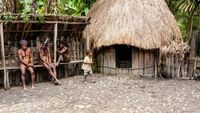 Papua Harusnya Punya Museum Koteka