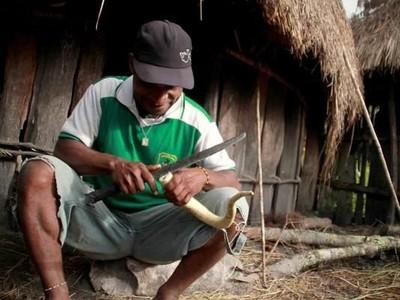 Koteka dari Papua, Tapi Tak Semua Orang Papua Pakai Koteka