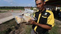 Cerita Mantan Petani Pembakar Lahan Beralih Jadi Pembuat Kompos