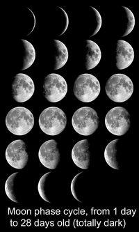 Siklus Bulan.