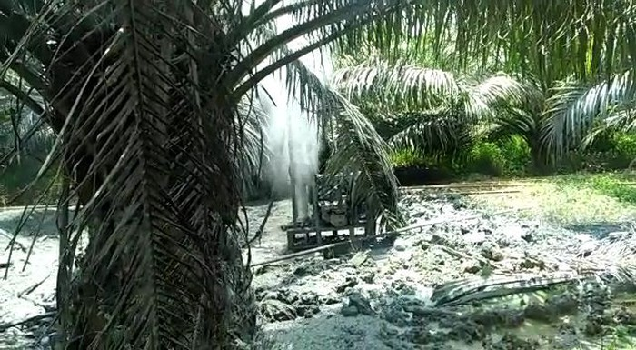 Semburan gas bercampur air dan lumpur setinggi lima meter muncul di Desa Seneubok Lapang, Kecamatan Pereulak Timur, Aceh Timur, Aceh. (Foto: Istimewa)