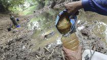 7 Provinsi di Indonesia Terdampak Kekeringan