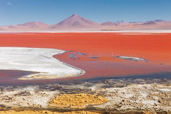 Sekeliling danau ini hanyalah batu dan sisaan garam. Jadi di tengah danau berwarna merah, tapi pinggirannya putih karena garam. Sungguh pemandangan yang langka dan cantik. (iStock)