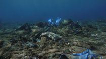 Potret Sampah Plastik Cemari Terumbu Karang di Laut Yunani