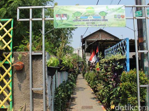 Gerbang masuk Kampung Hidroponik.