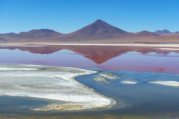 Laguna Coloroda menjadi menarik karena tampil beda. Begini, Laguna Colorada adalah danau yang berada di ketinggian 4.000 meter di atas permukaan air laut. (iStock)