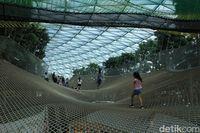 Manulife Sky-Nets Walking