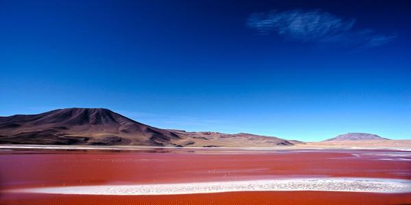 Nama Laguna Colorada menjadi salah satu destinasi menarik di perbatasan Bolivia dan Chilli. Berada tepat di Cagar Alam Nasional Andes Eduardo Avaroa, Departemen Potosi, danau ini jadi incaran fotografer. (iStock)