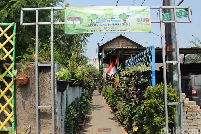 Berawal dari pemukiman kumuh, kampung yang terletak di Gg Ponpes RDS, Cimone, Karawaci, Kota Tangerang ini berubah menjadi Kampung Inovasi Cimone yang menjadi kampung percontohan. (Foto: Nabila Ulfa Jayanti/detikHealth)