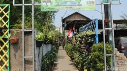 Tingkat polusi di Kota Tangerang cukup tinggi. Untungnya ada Kampung Hidroponik di Cimone yang bikin sejuk lingkungan sekitar.