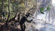 Cegah Karhutla di Aceh, Polisi Cari Penyebab Warga Bakar Hutan