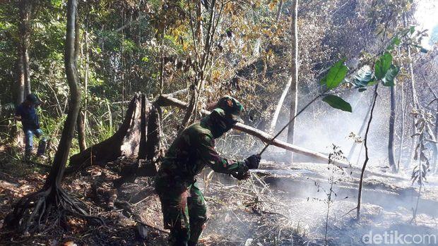 Petugas Beberkan Kesulitan Pemadaman Karhutla di Pelalawan Riau