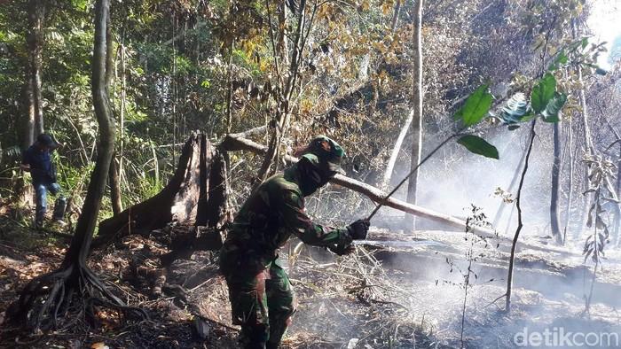 Pemadaman karhutla di Pelalawan Riau
