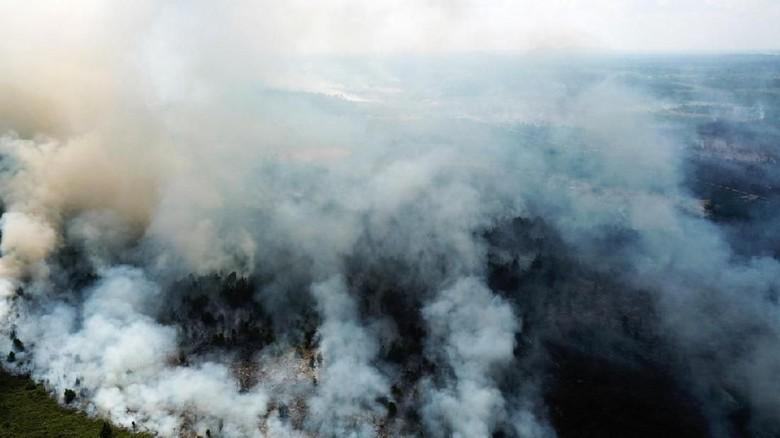KLHK Tetapkan Tersangka Pembakar Hutan di Kubu Raya Kalbar